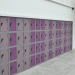 Probe 2 Door Locker